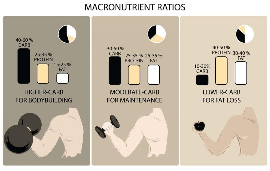 macronutrient graphic